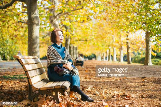 elegant asia woman sitting in bench in nature, autumn