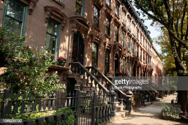 elegant brownstones and townhouses in brooklyn, new york city - piedra caliza fotografías e imágenes de stock