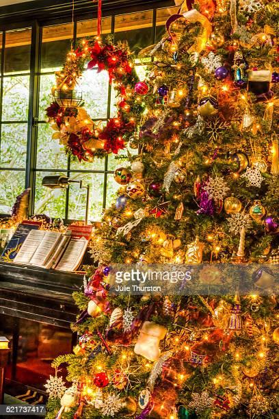 Elegant Christmas Tree, lights and wreath