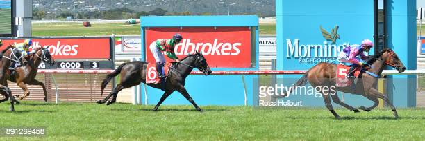 Elegant Queen ridden by Chris Caserta wins the Ron Hutchinson Turns 90 Hcp at Mornington Racecourse on December 13 2017 in Mornington Australia
