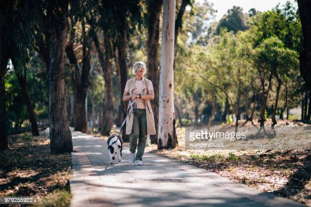 elegant senior woman walking dog and checking smartphone in park - smart watch stock pictures, royalty-free photos & images