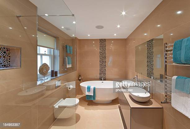 elegantly presented bathroom