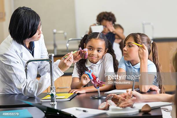 Elementary students learning anatomy in private school science class
