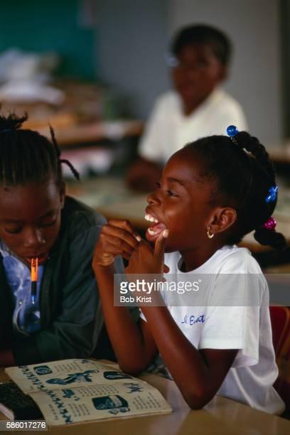 elementary students learning dutch - シント・ユースタティウス島 ストックフォトと画像