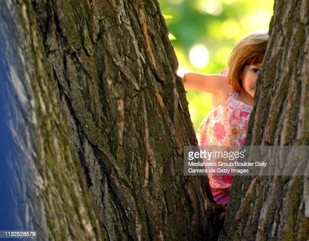 Elenor Steele peeks through the trees to see what the other kids are doing during the Eiruv celebrationThe Boulder Jewish community held an Eiruv...