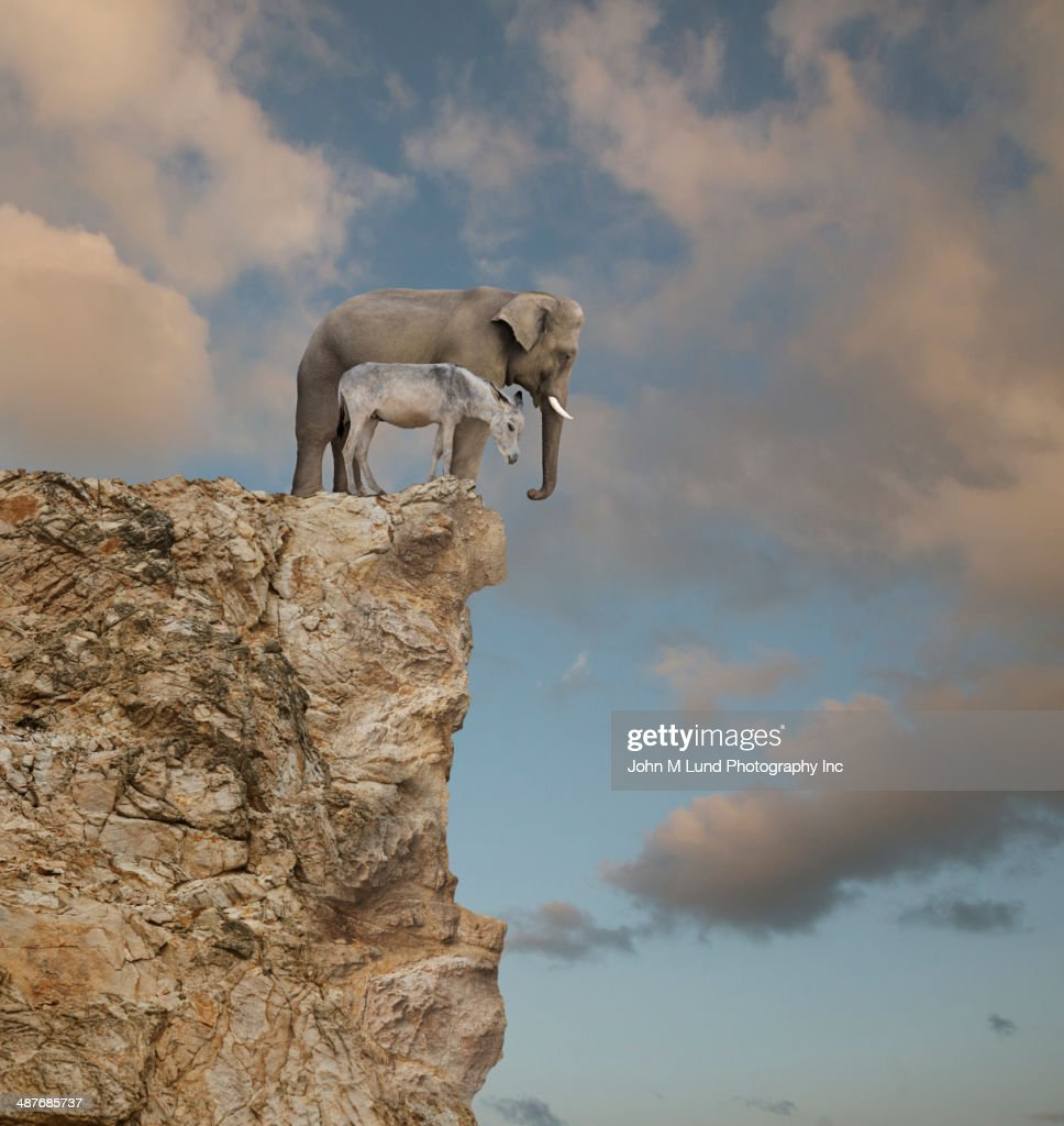 Elephant and donkey looking over edge of cliff : Stock Photo