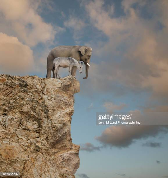 elephant and donkey looking over edge of cliff - democratic party usa stock pictures, royalty-free photos & images