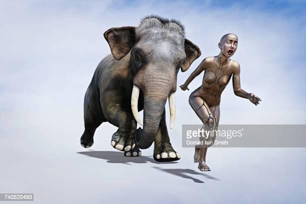 Elephant chasing robot woman