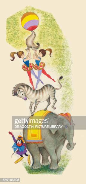 Elephant clown zebra acrobat and seal with a ball circus show drawing