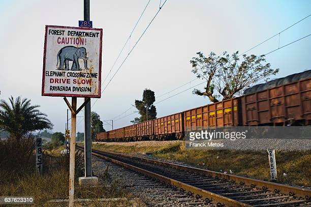 Elephant crossing the railway track sign ( India)