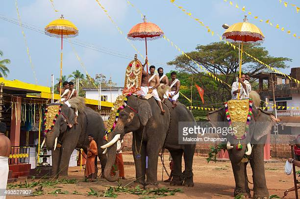 Elephant festival at a small temple in Adi-Kadalayi, Kannur, Kerala. Temples hire elephants for these local celebrations.
