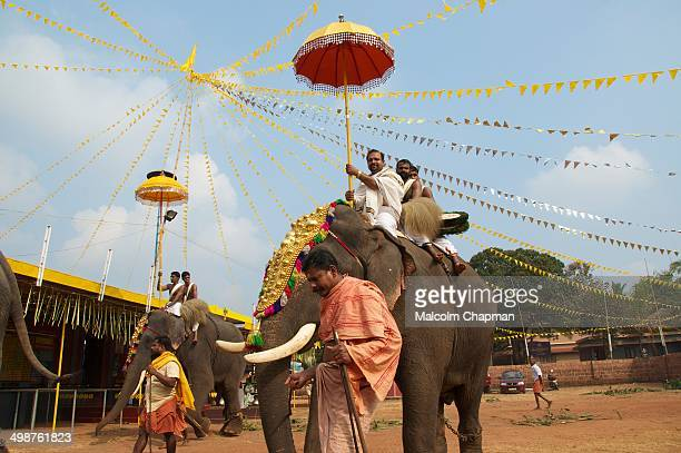 CONTENT] Elephant festival at a small temple in AdiKadalayi Thottada Kannur Kerala Temples hire elephants for these local celebrations