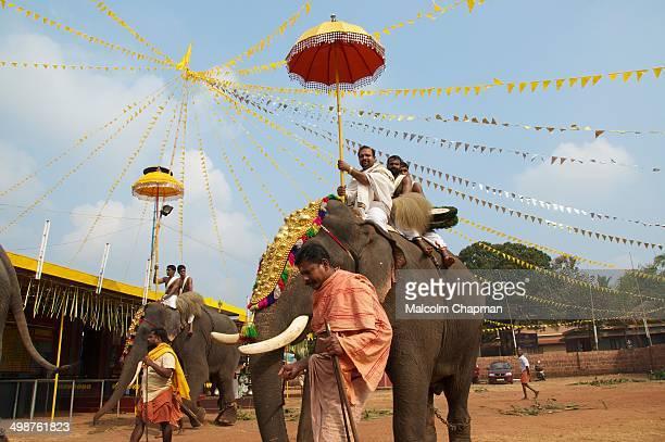 Elephant festival at a small temple in Adi-Kadalayi, Thottada, Kannur, Kerala. Temples hire elephants for these local celebrations.