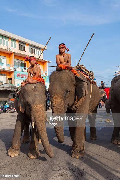 Elephant Festival in Surin, Thailand