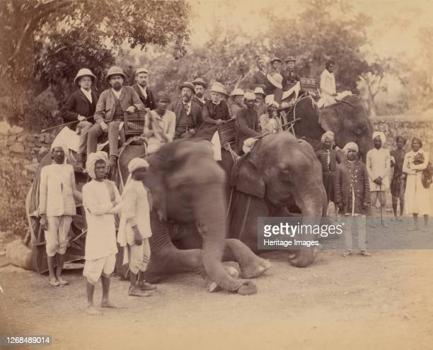 Elephant Group 1860s70s Artist Unknown