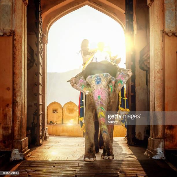 elefante na índia - india imagens e fotografias de stock