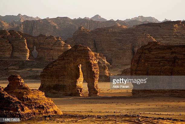 elephant rock in desert near al ula oasis. - gulf countries stock pictures, royalty-free photos & images