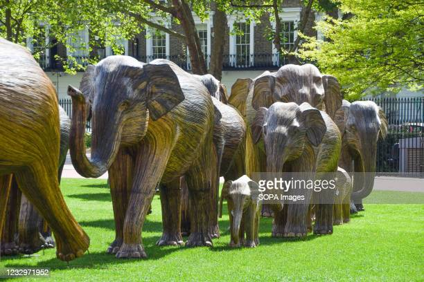 Elephant sculptures at the Duke of York Square in Chelsea, London. Part of the CoExistence art installation, which aims to shed light on human's...