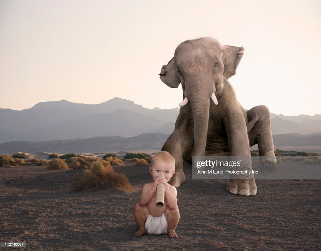 elephant sitting in desert with baby : Stock Photo