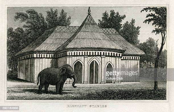 Elephant stables Regent's Park Zoological Gardens London From 1835 print