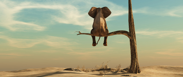 Elephant stands on thin branch of withered tree in surreal landscape. This is a 3d render illustration 1151822243