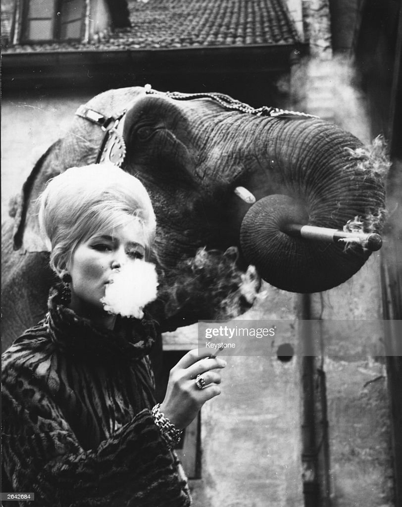 Elephant tamer Monique Holzmuller having a cigarette with one of her elephants.