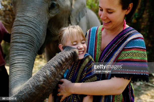 elephant touching girl with trunk standing by mother - very young thai girls stock photos and pictures