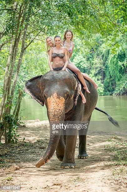 La randonnée à dos d'éléphant, tourisme femme en vacances, en Thaïlande