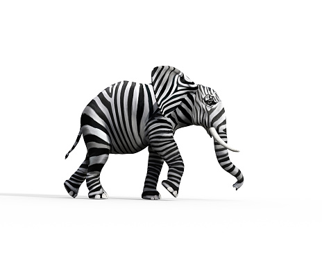 Elephant with zebra skin in the studio. The concept of being different. 3d render illustration 1163846304