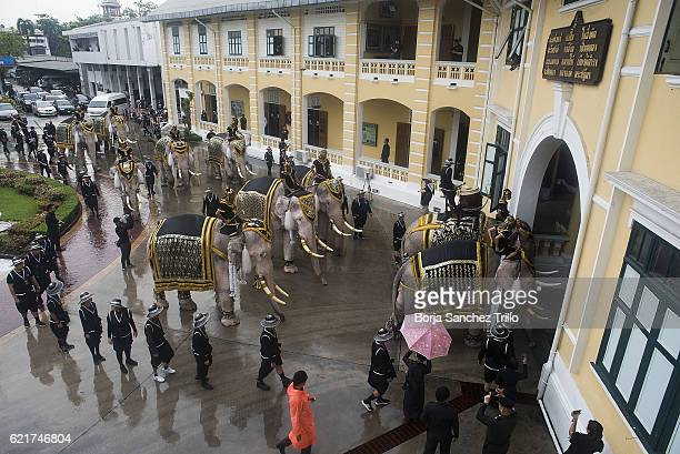 Elephants and caretakers head out from the Ministry of Defense heading to the Grand Palace during a parade to honour King Bhumibol Adulyadej on...