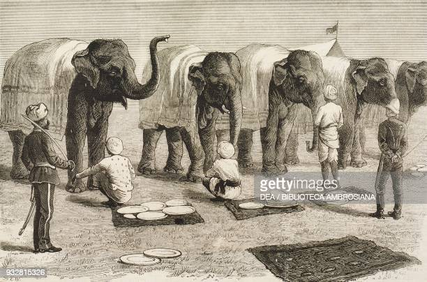 Elephants at mess Safaed Sung the end of the Second AngloAfghan War illustration from the magazine The Graphic volume XIX no 500 June 28 1879