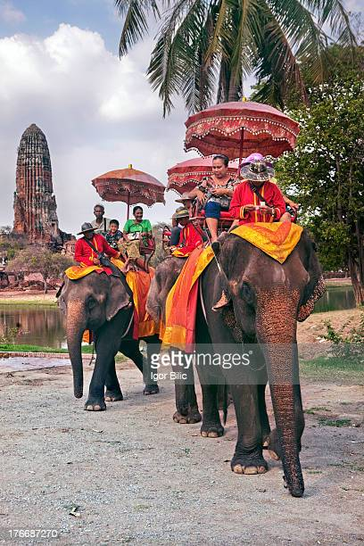 CONTENT] Elephants carrying a group of tourists around Ayutthaya Historical Park in the ancient capital of Ayutthaya in Thailand just North of Bangkok