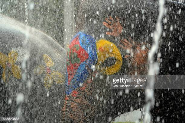 Elephants In Splashing Water During Songkran