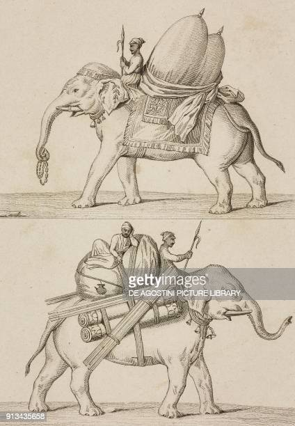 Elephants India engraving by Lemaitre after a manuscript from Inde by Dubois De Jancigny and Xavier Raymond L'Univers pittoresque published by Firmin...