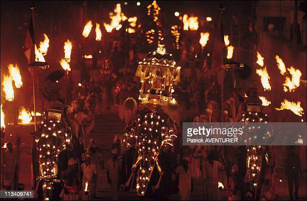 Elephants Of Buddha in Kandy In Sri Lanka In 1991 Perahera The Processions Parade The Streets Of Kandy On September 1st 1991 In Kandy Sri Lanka