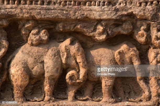 Elephants sculpture on sun temple wall, konark, orissa, india, asia