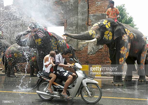 Elephants spray water on motorcyclists during the Songkran festival at ancient temple in Ayutthaya province 11 April 2007 Songkran is the Thai New...
