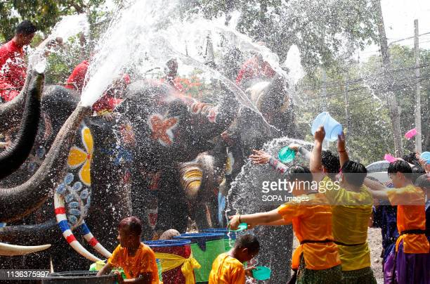 Elephants spray water on students during the celebration of the Songkran Water Festival in Ayutthaya province, north of Bangkok.