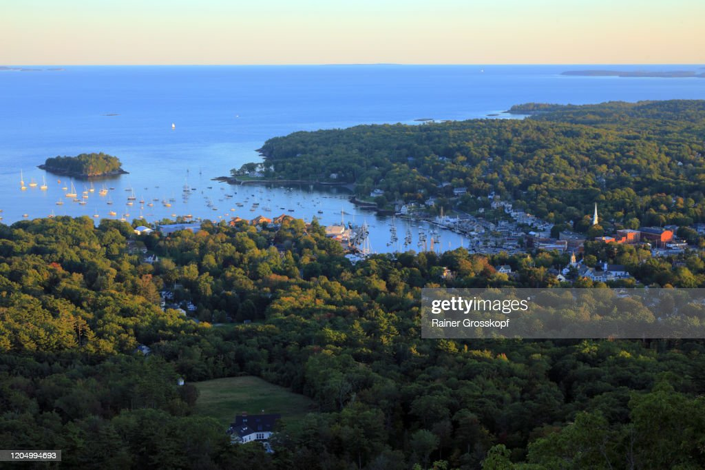 Elevated view at a Bay of the Atlantic ocean surrounded by forest : Stock-Foto
