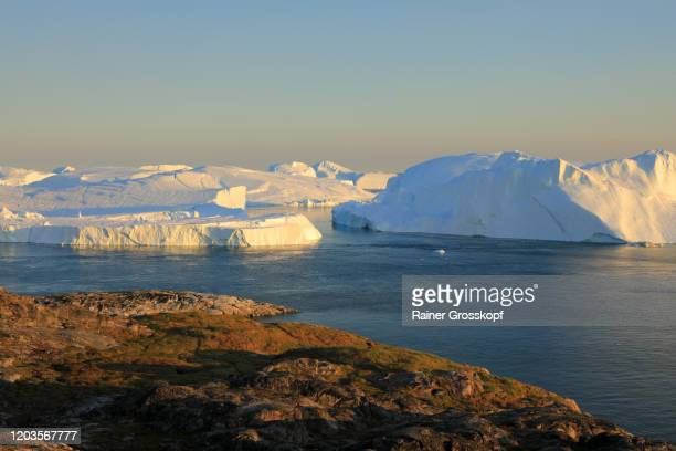 elevated view at huge icebergs in the icefjord at late afternoon - rainer grosskopf stock pictures, royalty-free photos & images