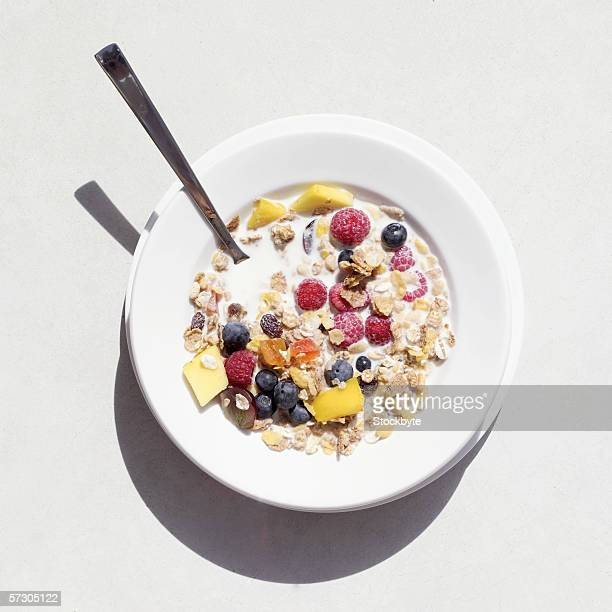 Elevated view of a bowl of fruit and cereal