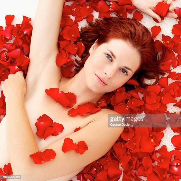 elevated view of a nude woman covered in rose petals