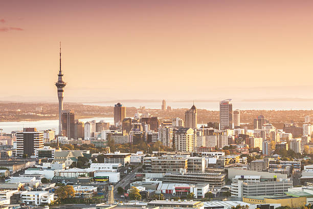 Elevated View Of Auckland City And CBD At Sunrise Wall Art