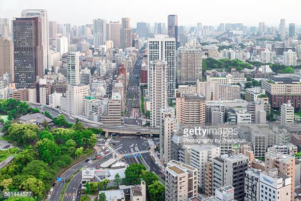 Elevated view of City scape of Tokyo