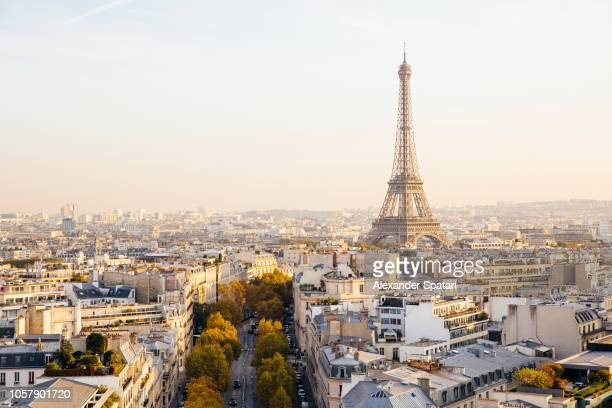 Elevated view of Eiffel Tower and Paris skyline at sunset, France
