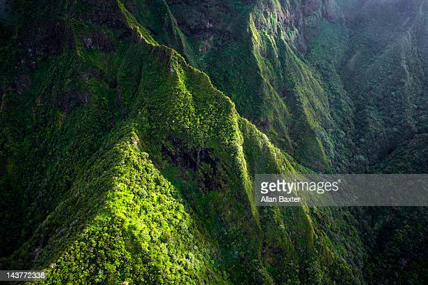 Elevated view of 'Iao Valley