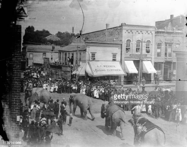 Elevated view of large crowd of people watching elephants from the Ringling Brothers Circus turning the corner of First and Main Streets, Black River...