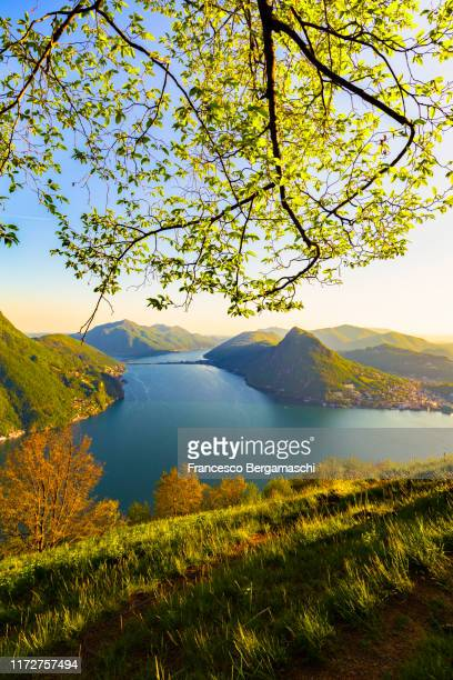 elevated view of lugano lake at sunset. monte brè, lugano, canton of ticino, switzerland, europe. - ticino canton stock pictures, royalty-free photos & images