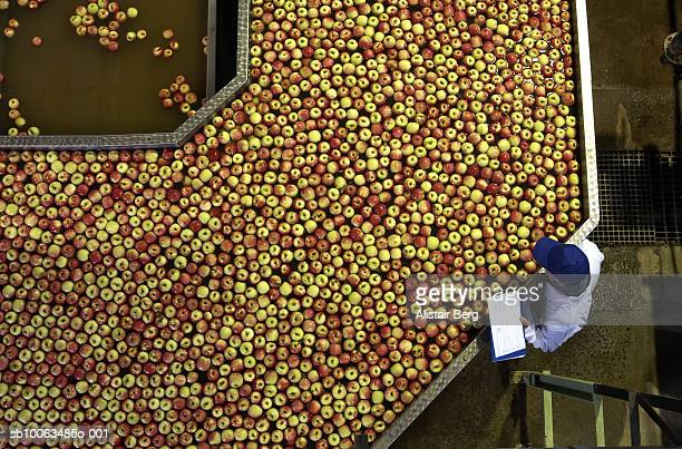 elevated view of male worker controlling apples floating in bath, apple processing factory - food and drink industry stock pictures, royalty-free photos & images