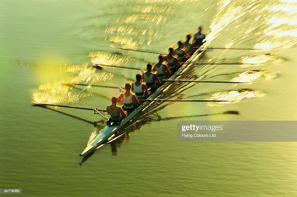 Elevated View of Men Sculling on a River : Stock Photo